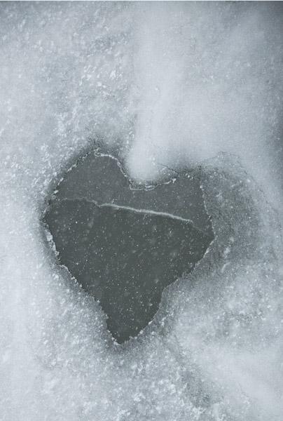 FrozenHeart6_4471
