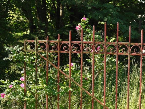 Gate&Roses3_1626
